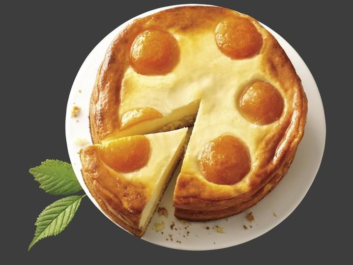 Aprikosen-Quark Kuchen laktosefrei
